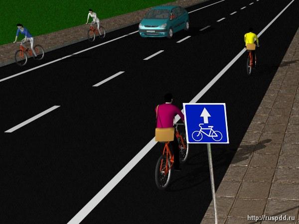 Изменено обозначение велосипедной полосы на проезжей части